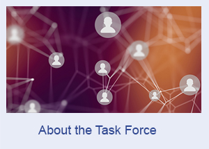 About the Task Force