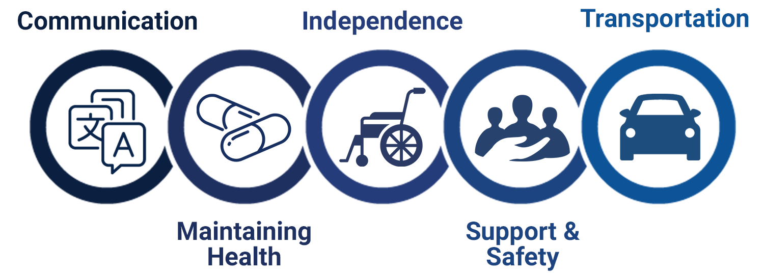 Infographic showing the 5 categories of the CMIST Framework: Communication, Maintaining Health, Independence, Support and Safety