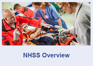 NHSS Overview