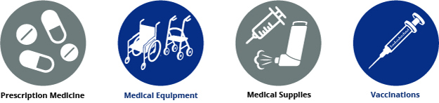 Infographic: EPAP provids prescription medicine, medical equipment, medical supplies and vaccinations.