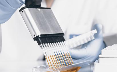 High throughput DNA amplification assay