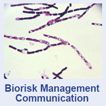 Biorisk Management Communications