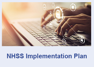 NHSS Implementation Plan