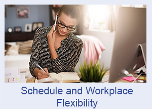 Workplace and Schedule Flexibility