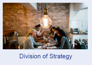 Division of Strategy
