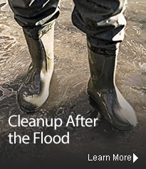 Cleanup from Flooding.  Learn More.